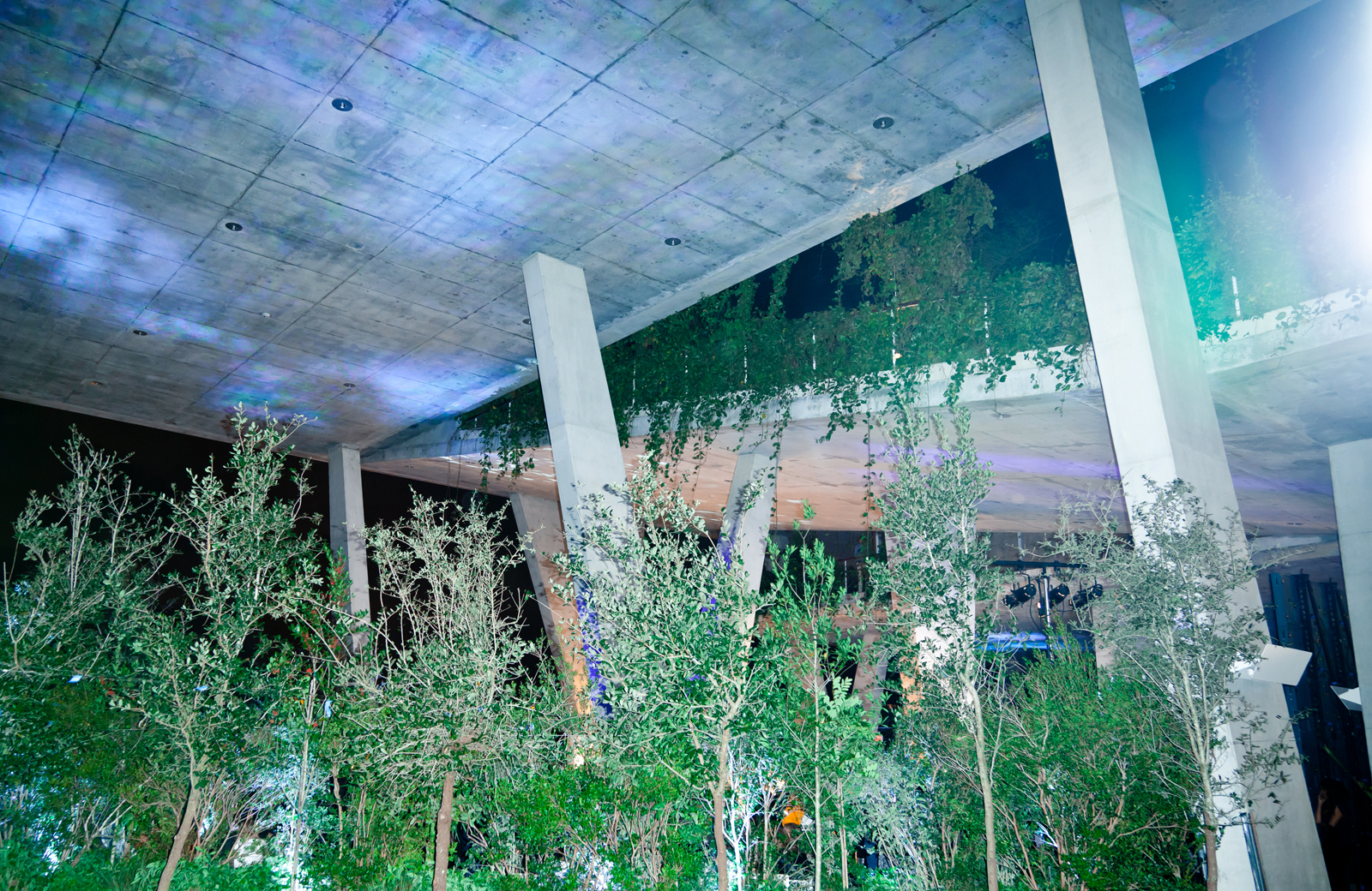 Oppenheim teamed up with Dwell to create a virtual forest in Herzog & de Meuron's 1111 Lincoln Road parking structure in Miami Beach.