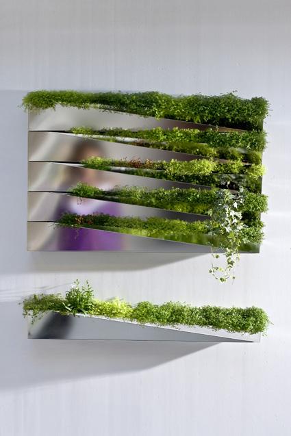 Grass Mirror Planter