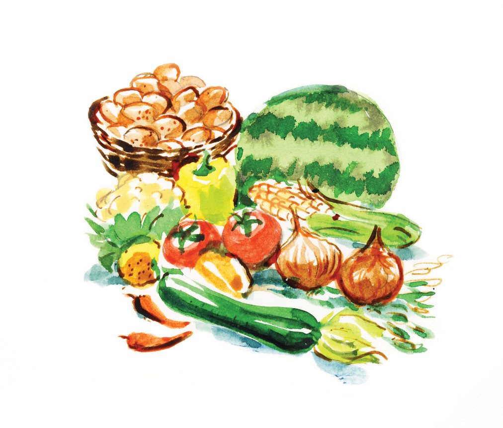 Local Food Dan Williams Illustrations
