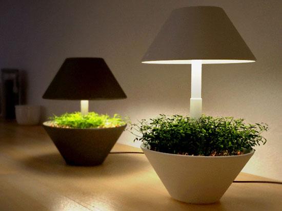 Shulab Lightpot 3