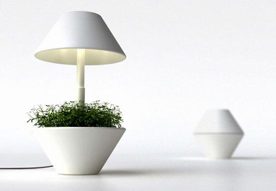 Shulab Lightpot 4