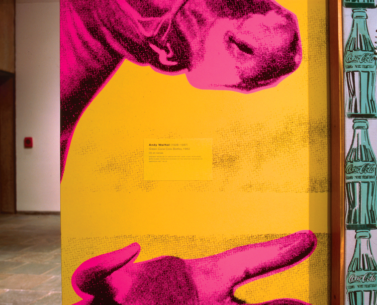 art collecting louise lawler pink and yellow and black green coca cola bottles from on a wall on a cow in a book in the mall 1999