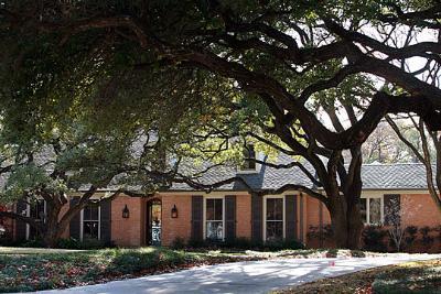 bushhouse540