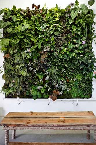friday vertical garden