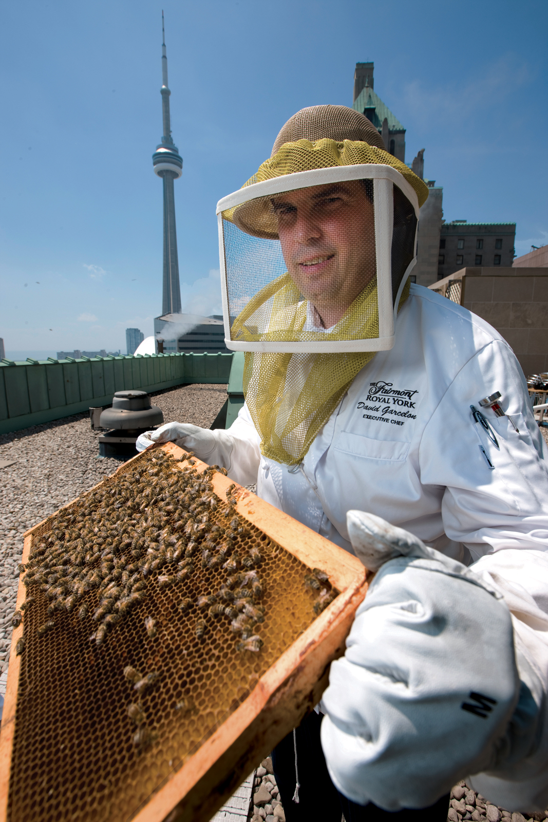Fairmont Royal York Hotel executive chef David Garcelon takes instruction from beekeepers on the handling of the three new hives on the hotel's roof, just beside the roof-top herb garden. Photograph by Norm Betts.