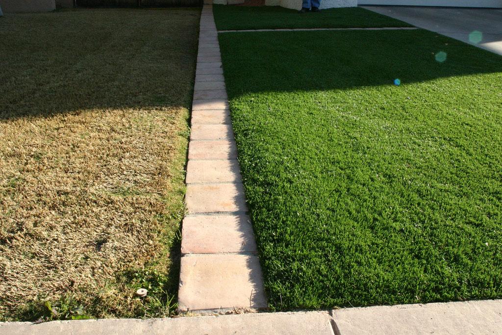 grass vs turf