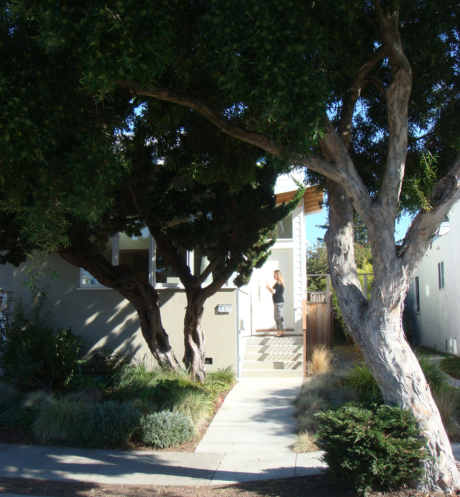 The home is situated on a quiet residential street in Albany, California. Most of the homes in the area are single-story bungalows built in the 1920s and 1930s. The residents, Ian MacLeod, Beatrice Moran, and their two children, were drawn to the location