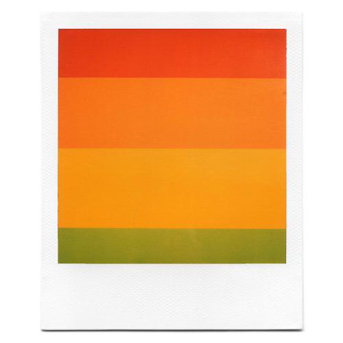 polaroid artwork grant hamilton