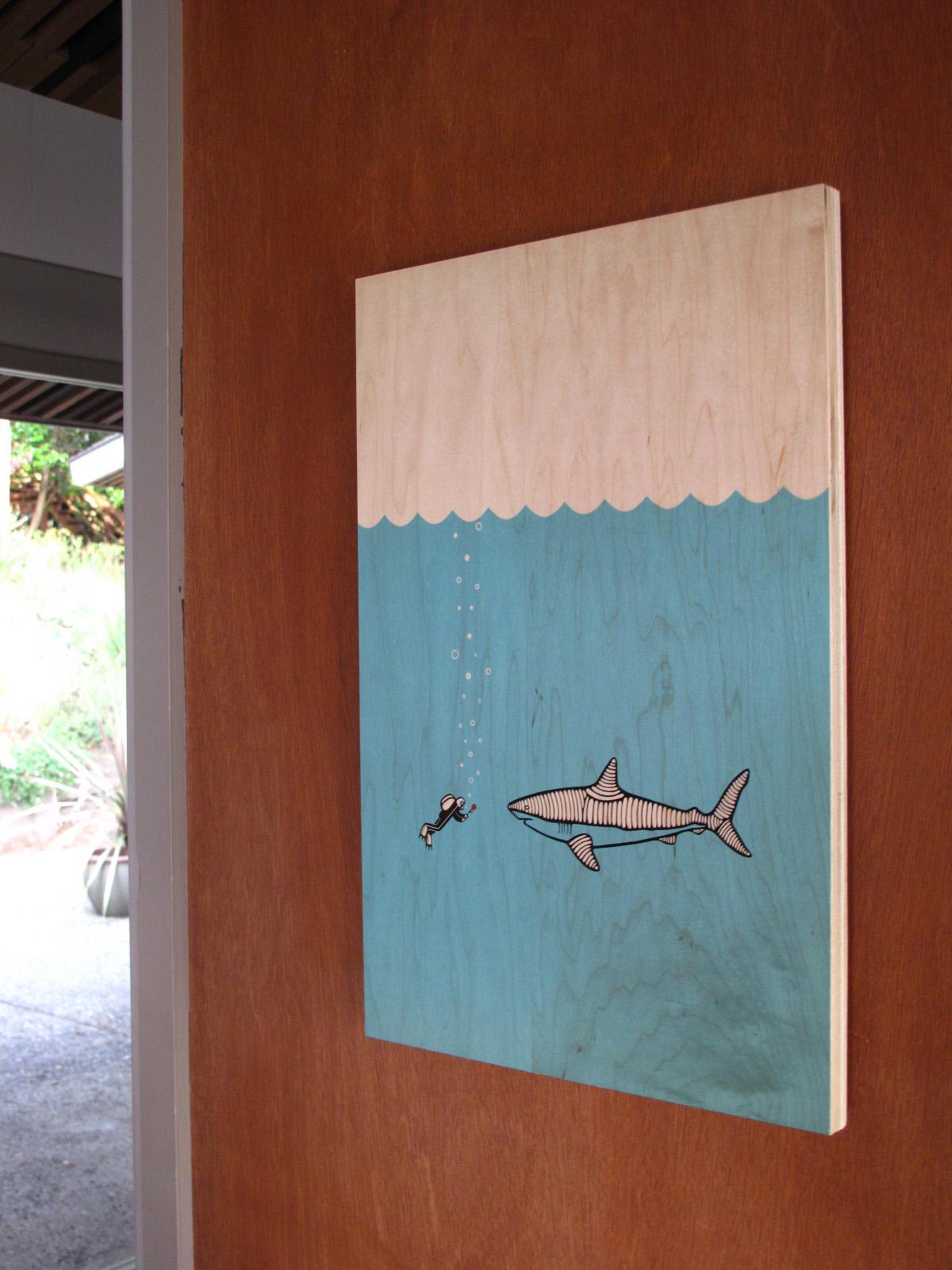 sea sheperd shark