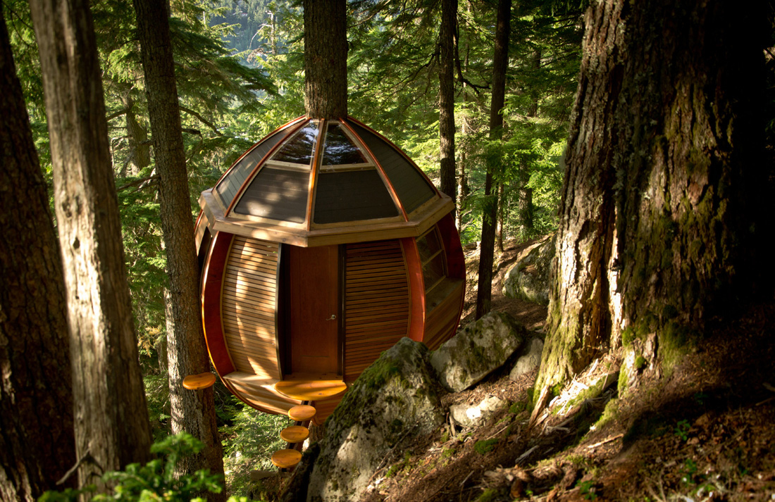 Joel Allen had always dreamed of building his own home and this miniature treehouse was the first step.
