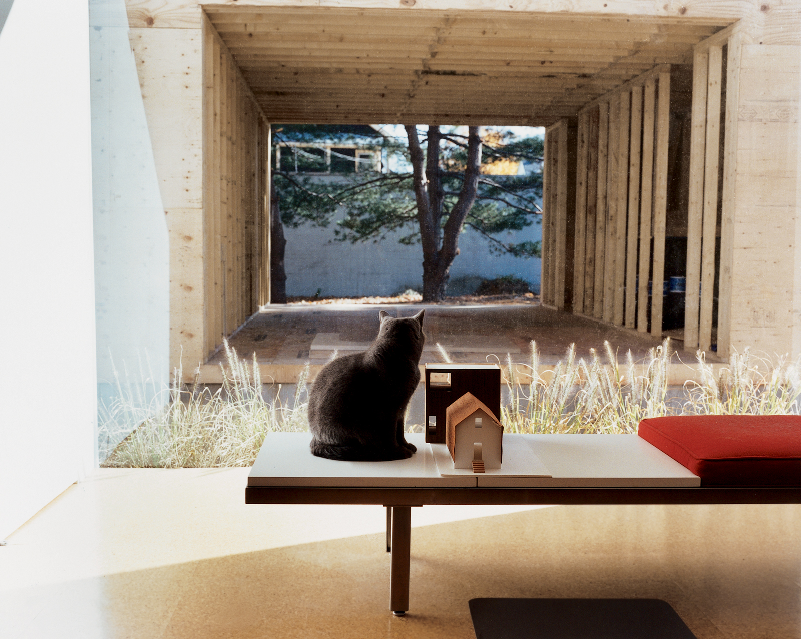 Seated on a George Nelson bench, feline resident Miu Miu gazes through the east picture window at the ongoing construction. Sharing the bench is a quarter-inch-to-one-inch-scale model of the house and addition.