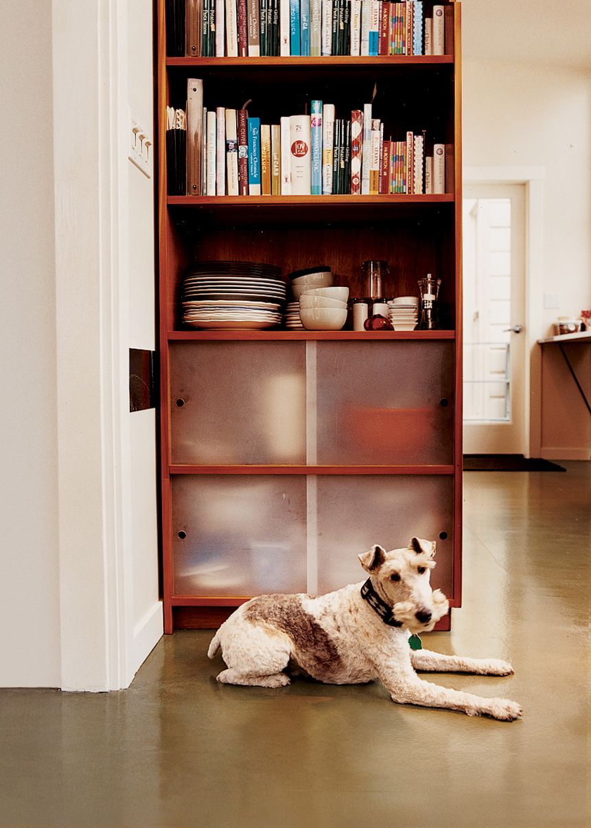 Sparky the wirehaired fox terrier takes a load off in front of one of the cherry-ply cabinets with sanded acrylic doors that Azevedo built for the kitchen.