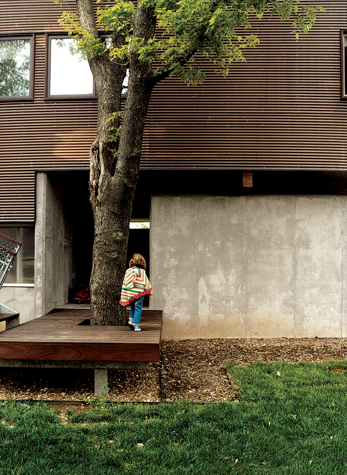 Jamie built the decking, of ipe, to accommodate a tree by the entrance to the garage.
