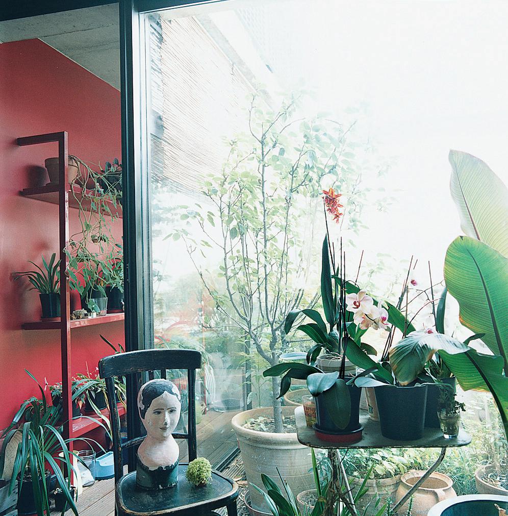 indoor gardens paris france blanc patrick dimanche house sun room