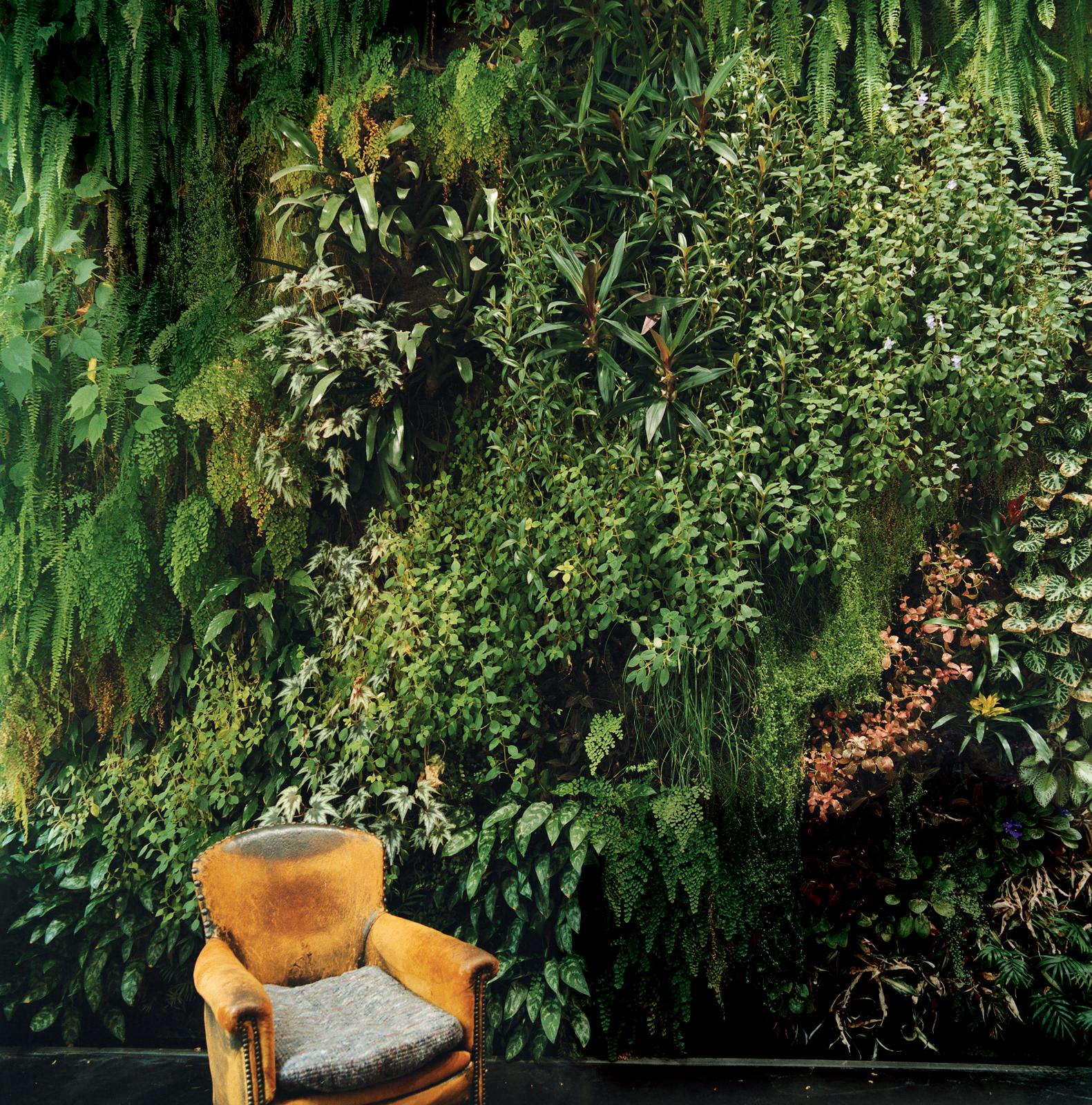 indoor gardens paris france blanc patrick dimanche house wall