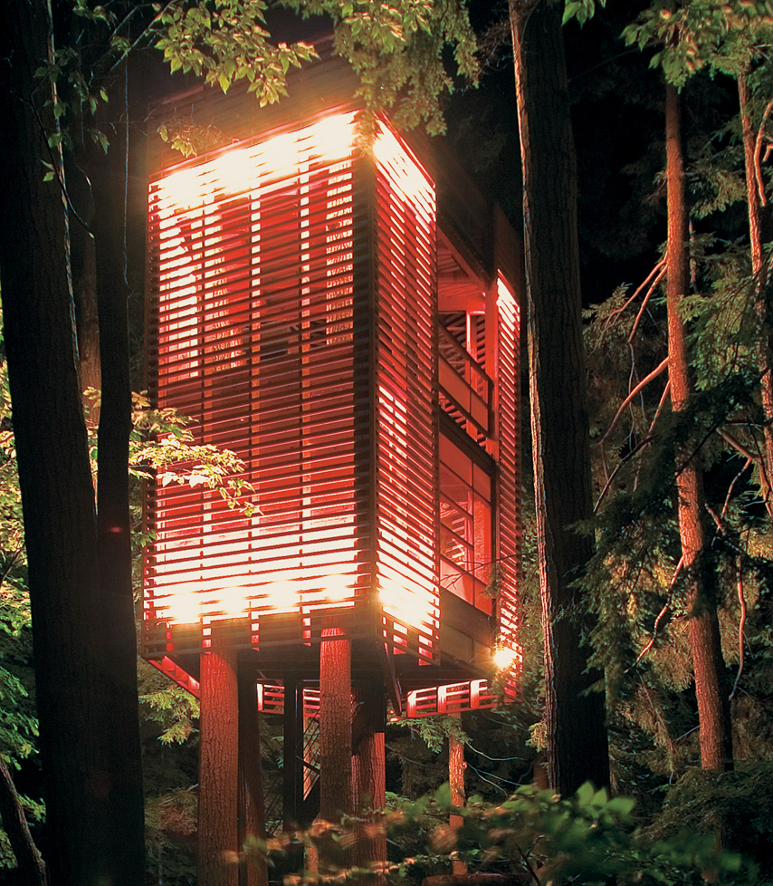 """This was really a parameter-driven project,"" explains Lukasz Kos, a Toronto-based designer and cofounder of the architecture firm Testroom. ""That is, I had to let the trees decide how the tree house would be.""  What the trees decided, apparently, was tha"