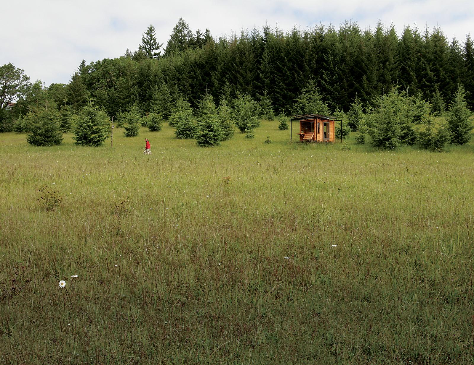 writer's cabin oregon