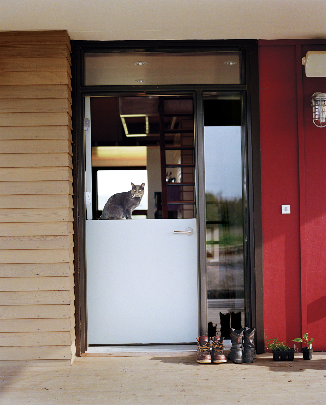 Cultivating the land keeps the Moumings in a frequent rotation in and out of the house. A Dutch door lets indoor and outdoor tasks flow together easily as they go about their day (with Yuri the cat standing guard).