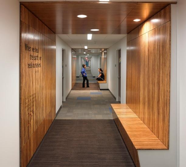 Plywood walls in Greiner Hall