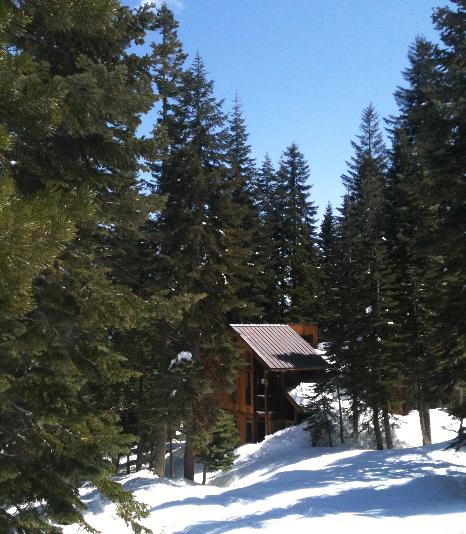 Cabin in Bear Valley