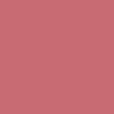 Pink Salmon by Glidden