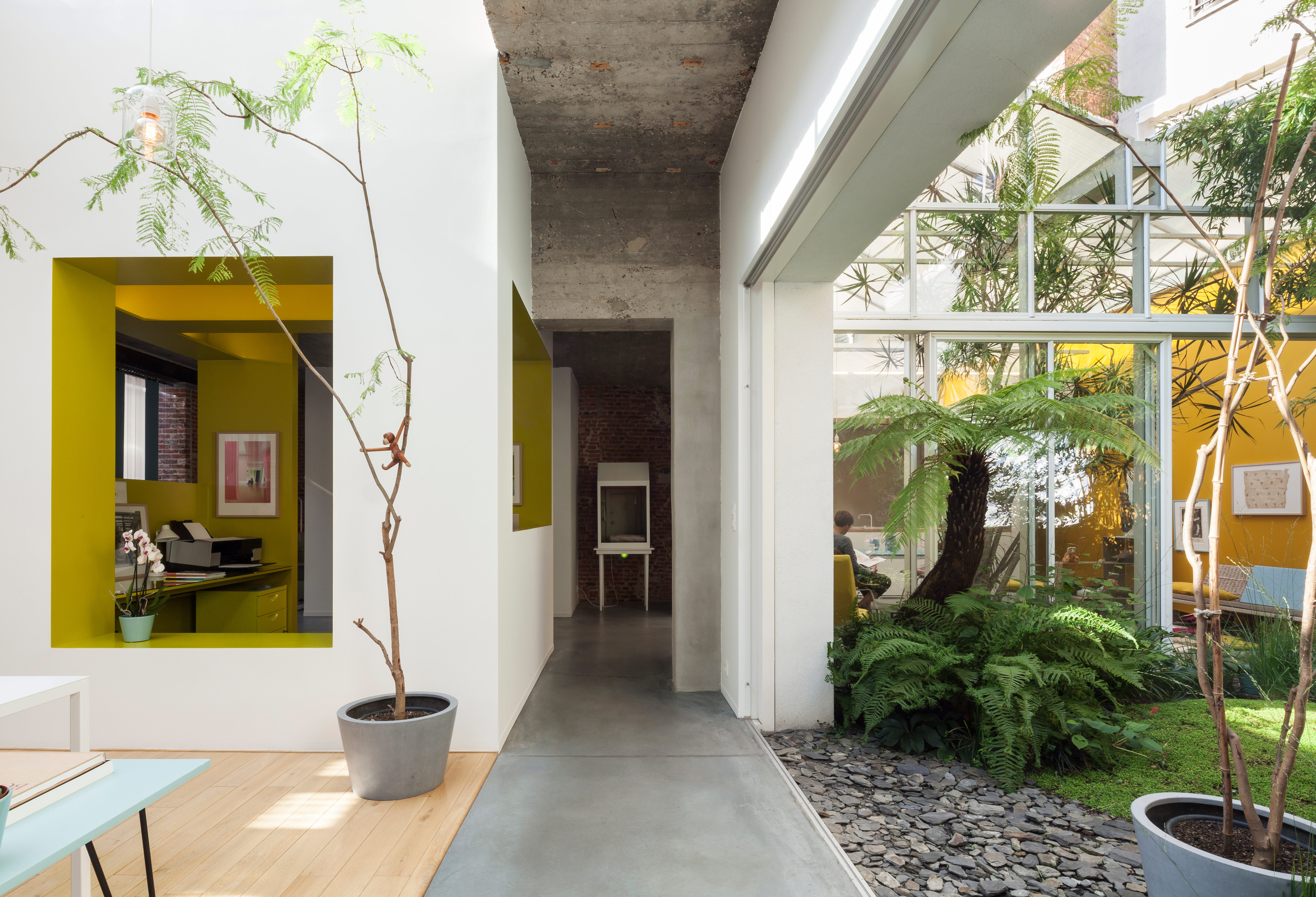 Interior courtyard garden with tropical plants and volcanic sand in Antwerp dwelling.