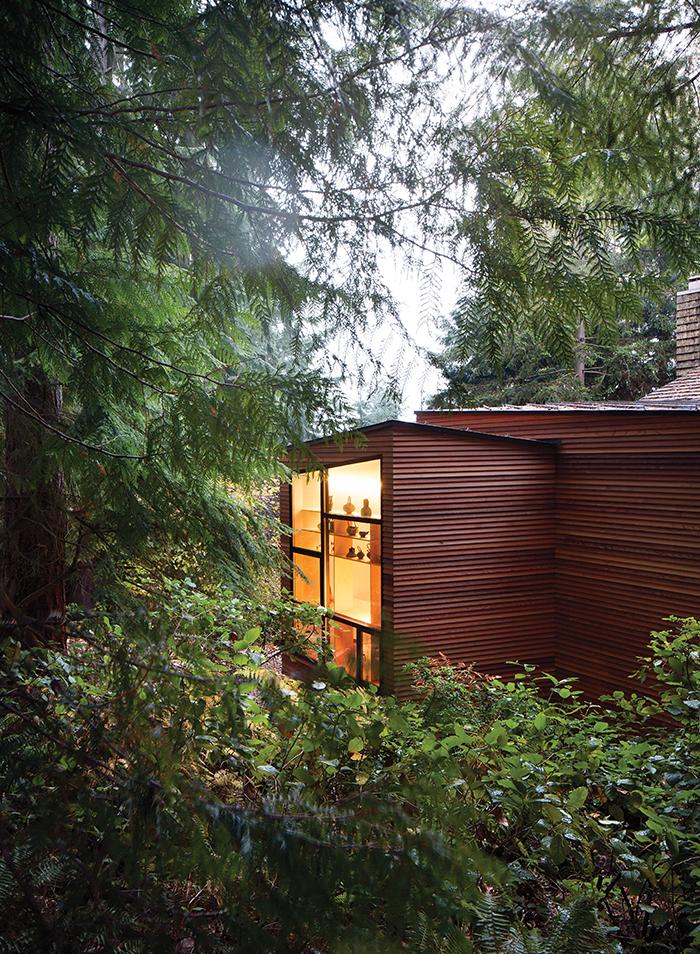 Modern addition with a cedar siding facade