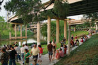 Urban Waterways Houston Buffalo Bayou trails native plants gathering.