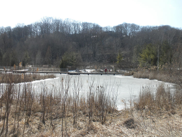 Even on a chilly day in March, the park enjoyed visitors trekking along the small hills and walking around and above the frozen ponds.
