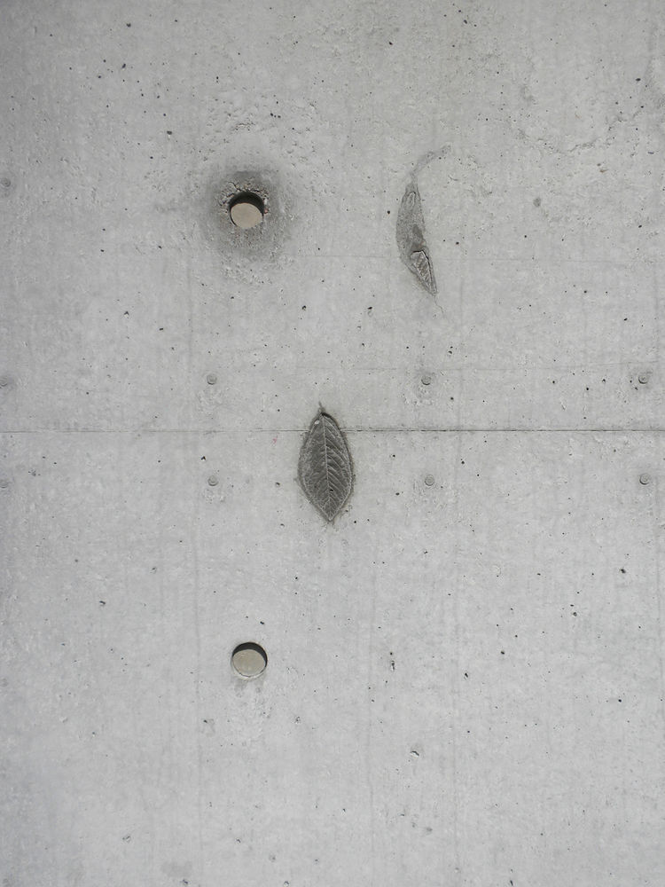 The concrete was poured in forms on site, a location that originally was and still is scattered with cherry trees. Though not intentional, several cherry tree leaves fell into the forms, creating three impressions in the concrete wall (two of which are sh