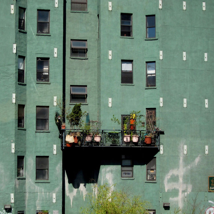 <i>Green Wall, NYC</i> shot by Loren Madsen in New York, New York.