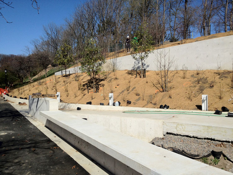 In addition to the green roof's flora, 60,000 other species will be planted around the building, including water-loving native shrubs and grasses for the soon-to-be rain garden.