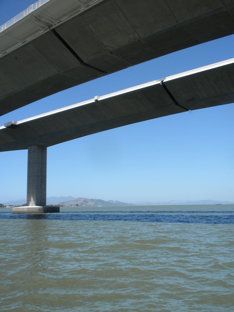 The dark stripes across the bridge are the gaps between sections that make up the expansion joint and allow for the expansion and contraction of the concrete and absorb the movements of the bridge during an earthquake.