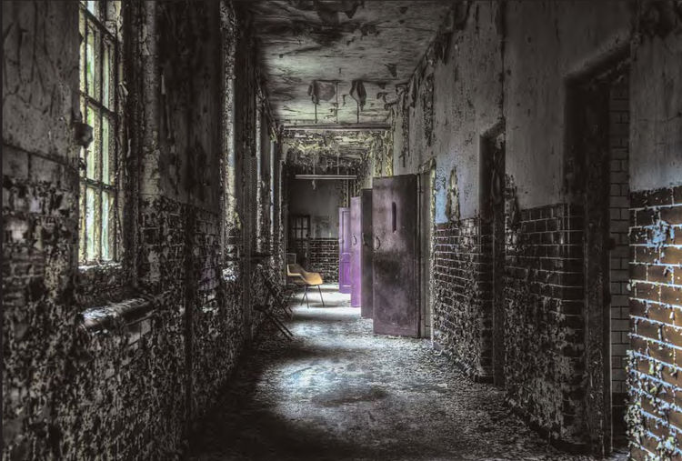 <i>The Color Purple</i> photographed in an abandoned asylum in the United Kingdom by RomanyWG.