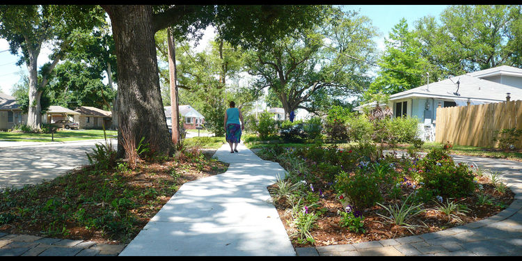 In Gentilly, longtime residents Arnold Brown and Betty Muller purchased the adjacent lot, built a new fence, and installed four barrels for a rain-collection system. In the front yard, they designed the sidewalk to bump out around the roots of an existing