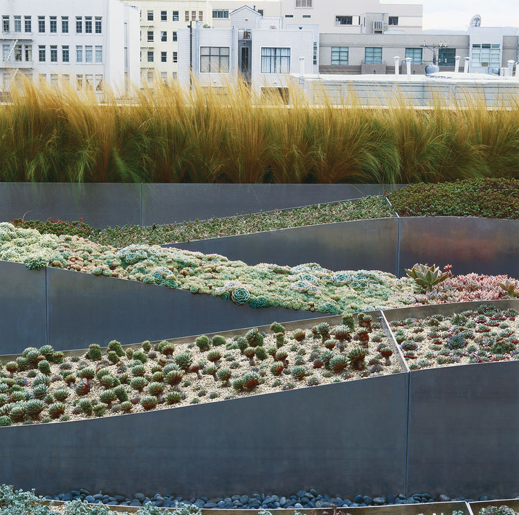 This Hayes Valley roof garden in San Francisco was designed by Cochran in 2002. Photo by Marion Brenner.