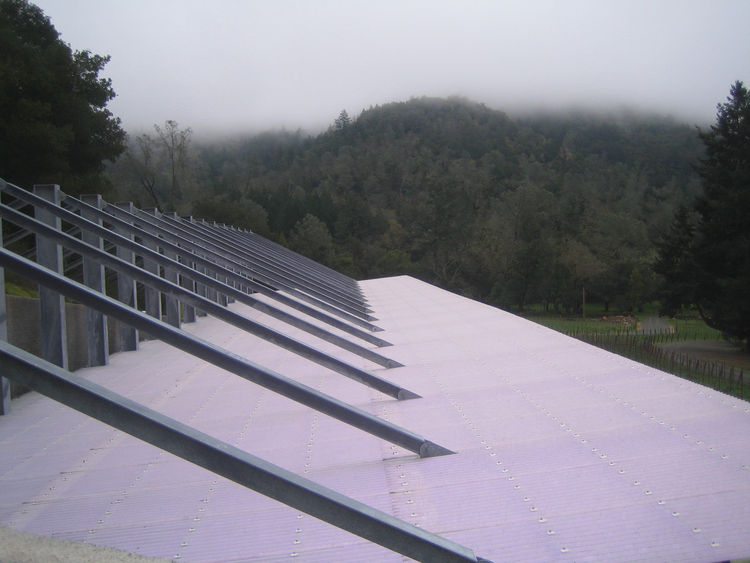 We climbed up the hillside and Smith showed me that a UV coating on the plastic roof not only helps filter out the heat while retaining the light, but also has a faint purple cast. That gentle color, especially when taken with the green hillside on that m