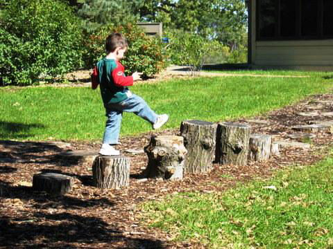 A series of boulders or stumps are great for jumping or stepping. Burying at least one-third of each below ground will ensure that it is stable and won't tip over as someone skips from one stump to another.<br /><br />Image by Steve Olson of the Universit