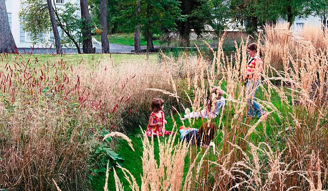 <h3>Step 4: Plant Some Grasses to Wave in the Wind</h3> Grasses are perfect for children to hide in without being such a solid barrier as to present a security risk. Plus they're low maintenance, and let any toddler become a lion in a savannah. This beaut