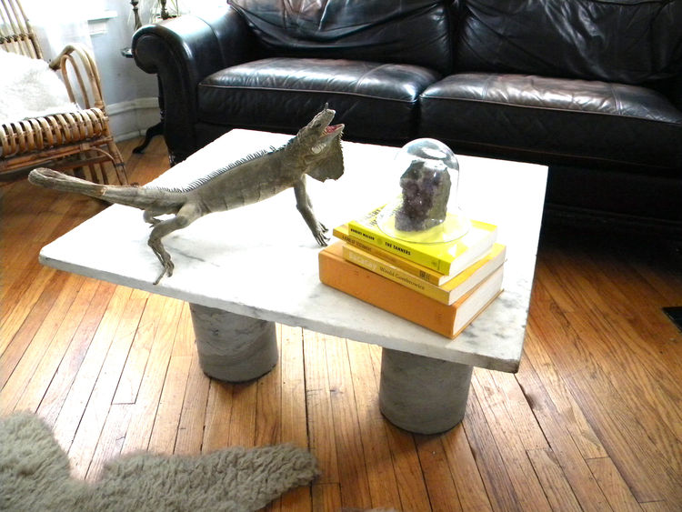 I made this coffee table from a slab of marble salvaged at a barn sale and two concrete columns that I mixed up in my backyard one afternoon. It only cost me $65 to make.