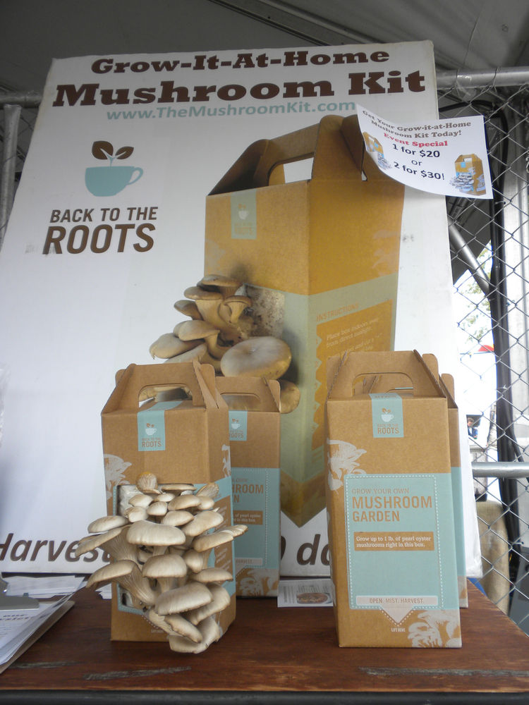 "<a href=""http://www.bttrventures.com/"">Back to the Roots Mushroom Kits</a> were a big hit. For $20, you got a box that will sprout a crop of mushrooms within ten days. Each box is reported to grow at least two crops. Perfect for apartment dwellers and ava"