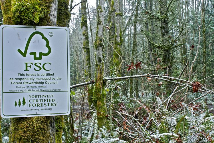 "The site afforded the opportunity to not only learn about responsible thinning and clearing but also to have a FSC audit to get the entire site <a href=""http://nnrg.org/nw-certified-forestry/About%20FSC%20Certification"">Forest Stewardship Council</a> cert"