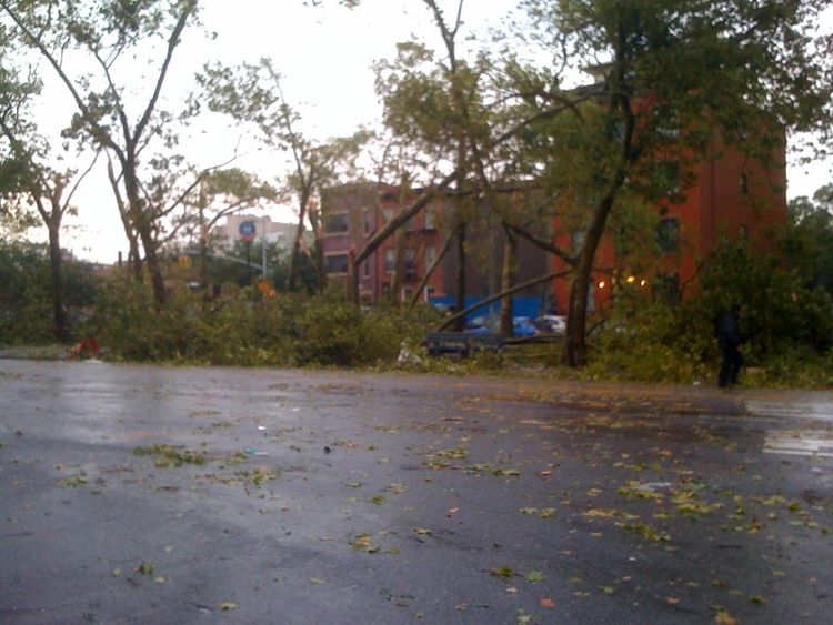 While reporting a story about an architect's rowhouse in Brooklyn, I had a close call, narrowly avoiding getting caught in the epic tornado that blazed through the city. I passed this park on my walk back to the subway. All that greenery on the ground is