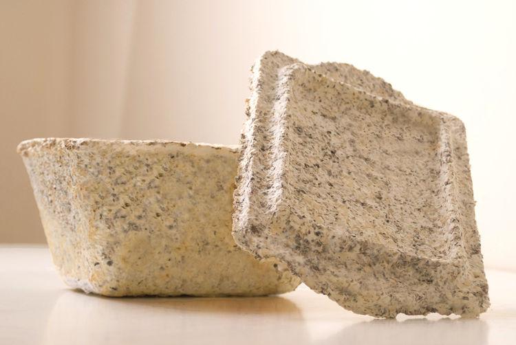 GreensulateTM. Eben Bayer (American, b. 1985), Gavin McIntyre (American, b. 1985), and Edward Browka (American, b. 1979), Ecovative Design LLC. United States, 2007. Mycelium, local agricultural waste, including cotton burrs, buckwheat hulls, rice hulls. P
