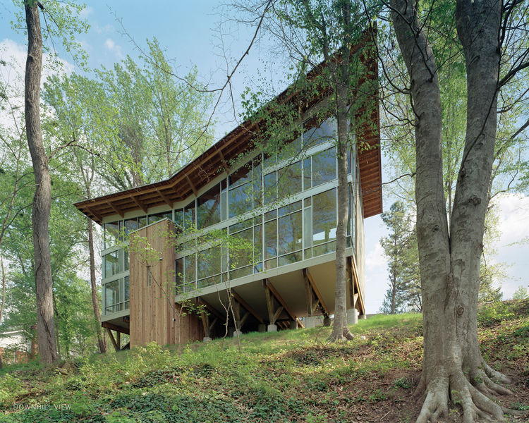 The house is perched on nine broad wood trusses to avoid cutting a single tree. The trusses also permit air and water to flow under the house, preserving the hydrology. The butterfly-shaped roof opens views to the creek and funnels rainwater into a collec