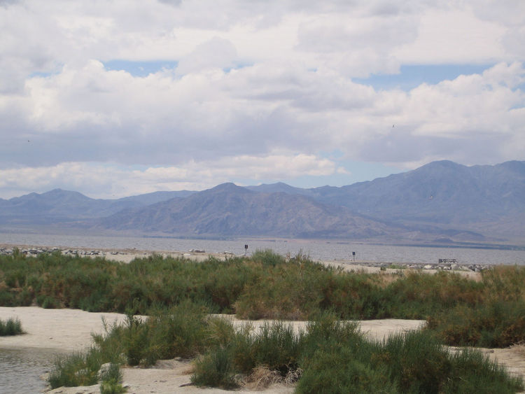 Again, those epic mountains. In prehistoric times the Salton Sea would have been part of the Sea of Cortez between Baja California and mainland Mexico.