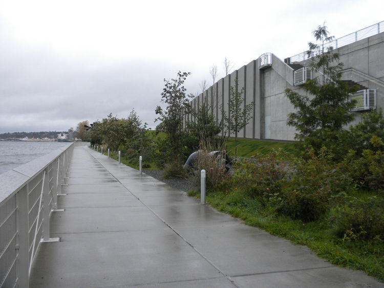 The train continued along the water and the Elliot Bay Trail, which leads to—and through—Myrtle Edwards Park. The park comprises four representative Northwest landscapes, the lowest being the Shore.