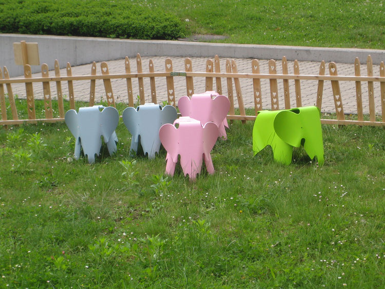 The Eames' toy elephants which live outside one of the showrooms still haven't managed to escape their pen.