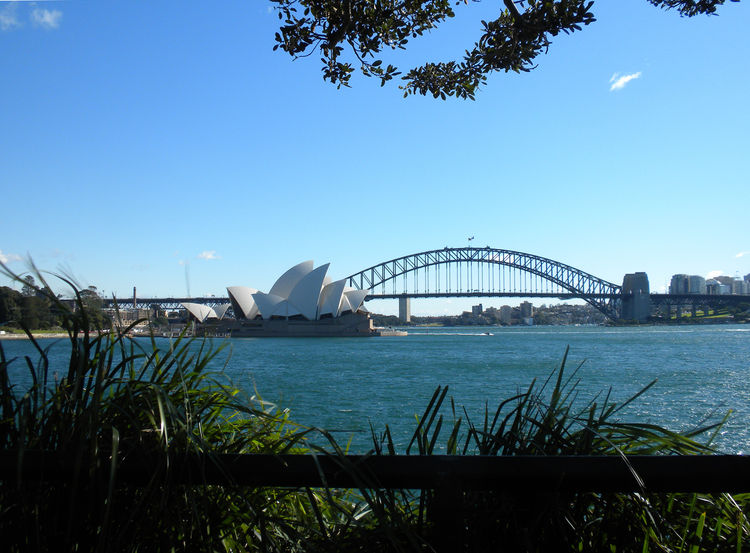 "Here, a view of the Sydney Opera House from the Yurong Precinct of the Royal Botanic Gardens. For more about the Opera House (including a detailed history of the building, shows, and more), visit <a href=""http://www.sydneyoperahouse.com"">sydneyoperahouse."