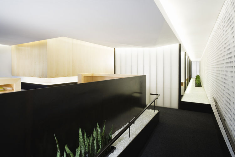 "Washington Square Park Dental in San Francisco, California. Designed by Montalba Architects, Inc. Winner of the 2011 Institute Honor Award for Interior Architecture. Project description: ""Spatial layout and design decisions were made with the intent of ma"